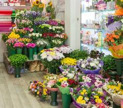 Магазини Фея на цветята - цветя и букети онлайн