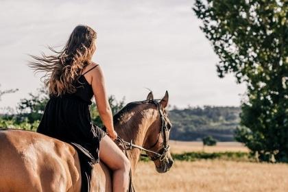 Оферти за яздене на кон от много конни бази